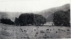 calaisvalley