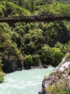 bungy2