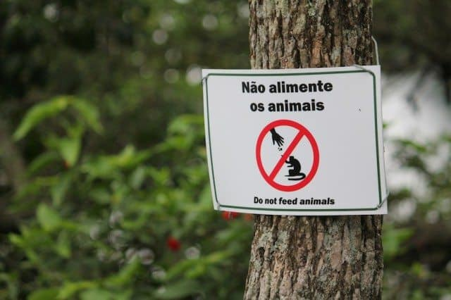 Don't feed the animals sign