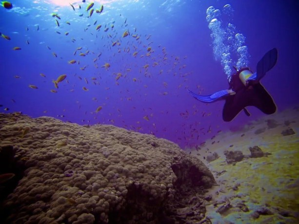Red-Sea-Diving-Bubbles