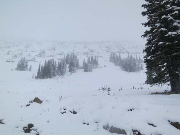 Harts Pass Snow Mountain