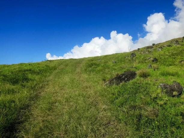 Kaupo Gap Trail Grass
