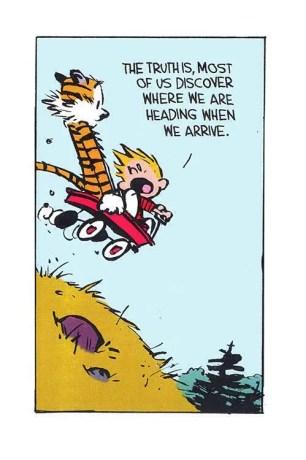 Calvin Quote