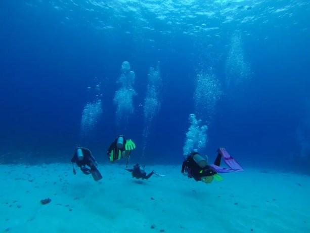 Molokini Divers