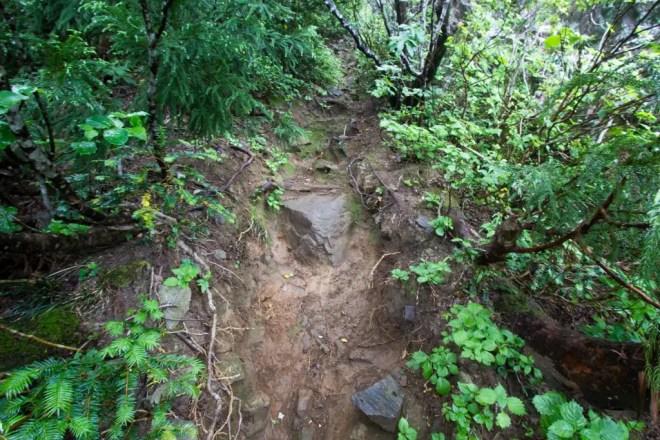 Mt Nosaka Spur Trail Steep