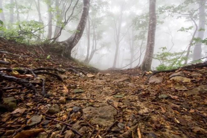 Mt Nosaka Trail