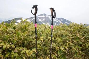 Black Diamond Ergo Cork Trekking Poles