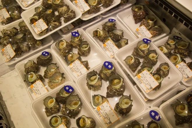 Japanese Supermarket Horned Turbans