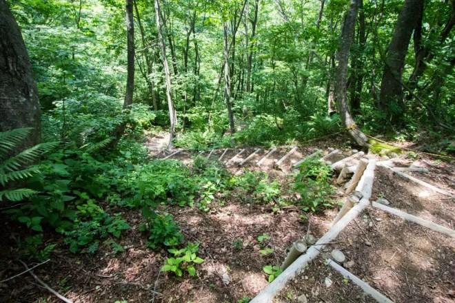 Mt Sannomine Trail Steps