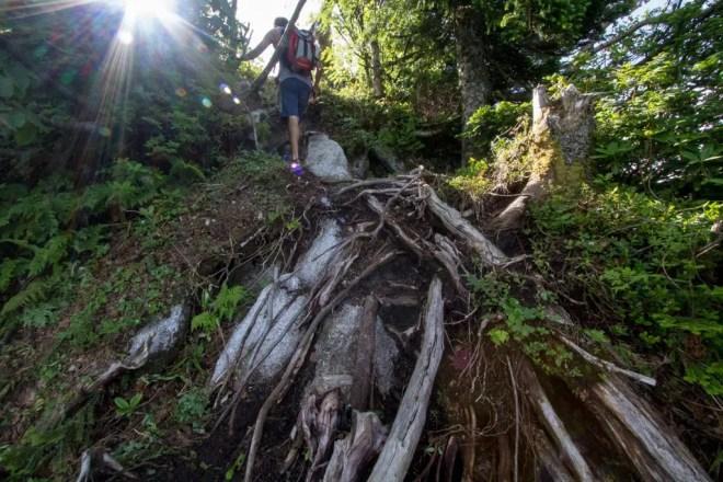 Mt Tsurugi Trail