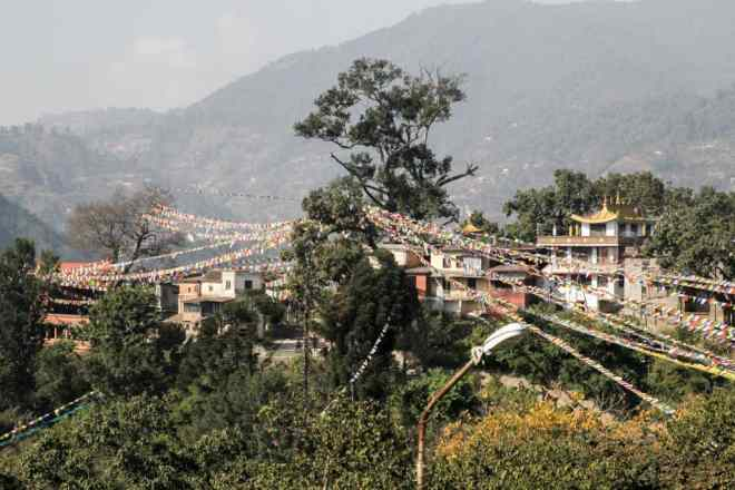 Kathmandu Tree Flags