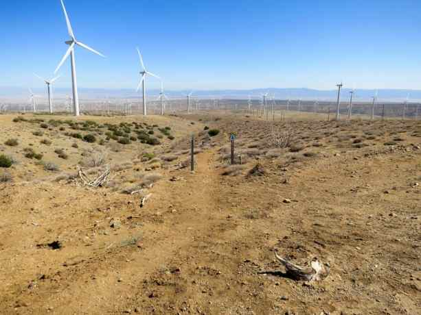 PCT California Desert Wind Farm