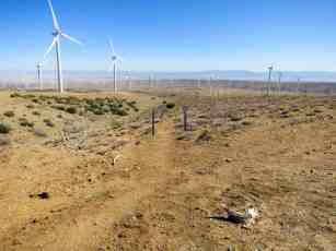 PCT Desert Wind Farm