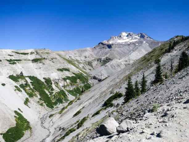PCT Oregon Mount Hood