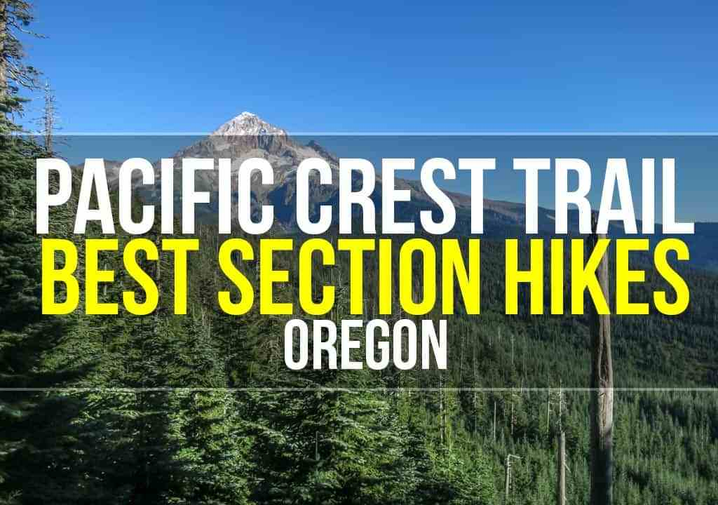 PCT Oregon Section Hikes Featured