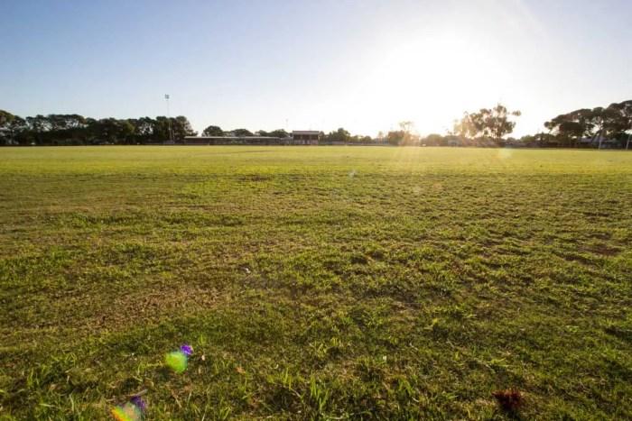 Australia-Mallala-Field