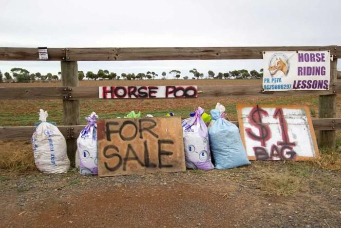 Australia-Horse-Poo