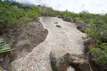 brazil-rio-pao-de-acucar-trail-2