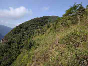 brazil-rio-de-janeiro-dois-irmaos-trail-2