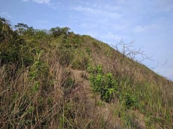 brazil-rio-de-janeiro-dois-irmaos-trail-3