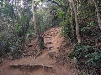 brazil-rio-de-janeiro-dois-irmaos-trail-4