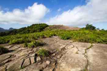 pedra-bonita-summit-4