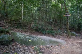 brazil-rio-de-janeiro-pedra-da-gavea-trail-11
