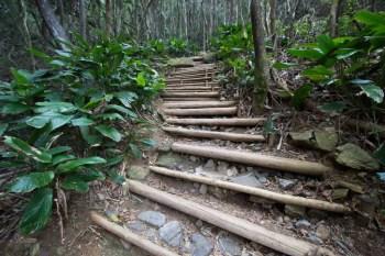 brazil-riode-janeiro-morro-da-urca-trail-1