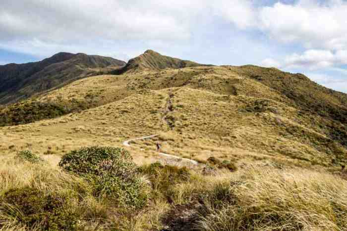 New-Zealand-North-Island-Hike
