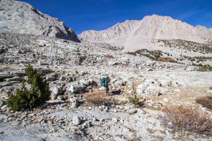 Sierra-Fall-22-Shephard-Trail