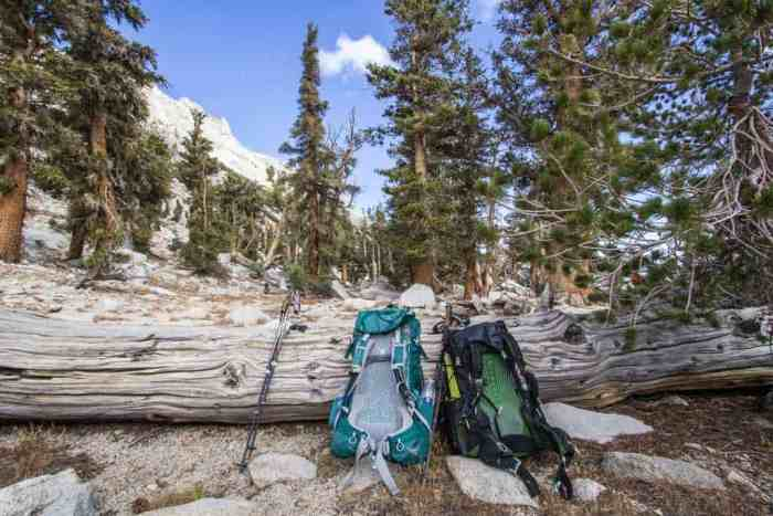 Sierra-Fall-5-Backpacks