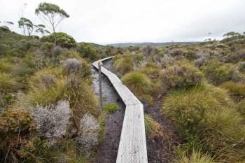 Tasmania-Overland-Track-Infrastructure-1