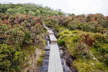 Tasmania-Overland-Track-Infrastructure-3