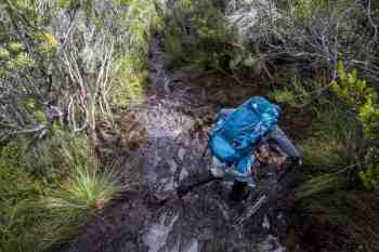 Tasmania-Western-Arthurs-Mud