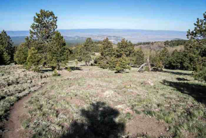 CDT-New-Mexico-Mount-Taylor-Trail