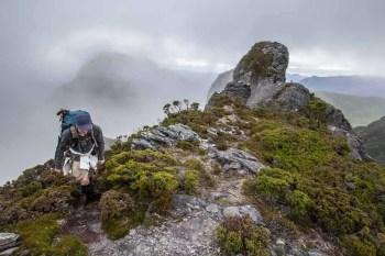 Tasmania-Western-Arthurs-Trail-2