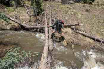 CDT-Colorado-Moist-Cumbres-Stream
