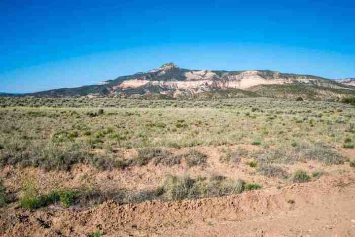 CDT-New-Meixco-Ghost-Ranch-Dirt-Road