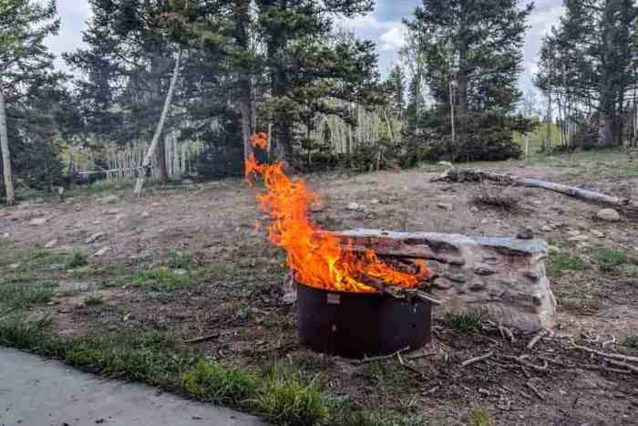 CDT-New-Mexico-Fire-Pit-Blaze