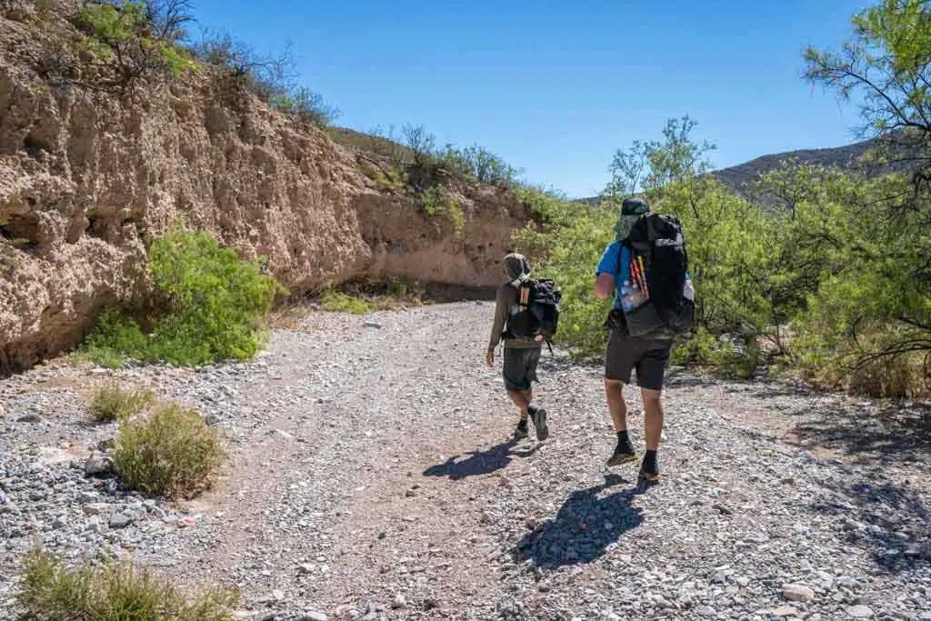 CDT-New-Mexico-Bootheel-Gallery-Appa-Moist-Walk-Green