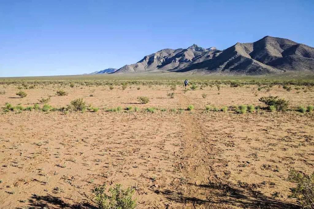 CDT-New-Mexico-Bootheel-Gallery-Moist-Big-Hatchet