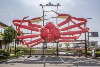 Japan-Shiga-Lake-Biwa-Giant-Crab