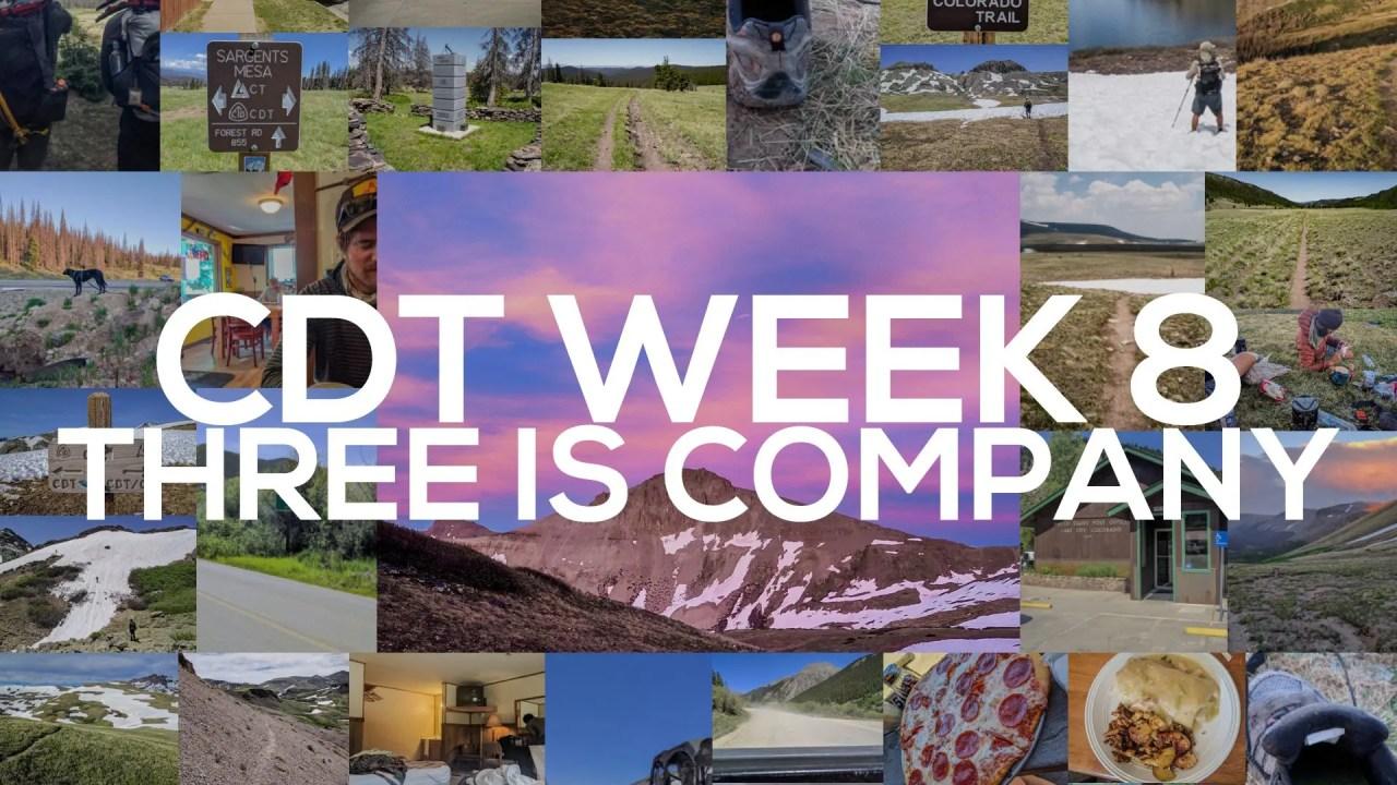 CDT Week 8