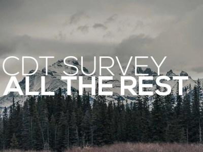CDT Survey All Posts
