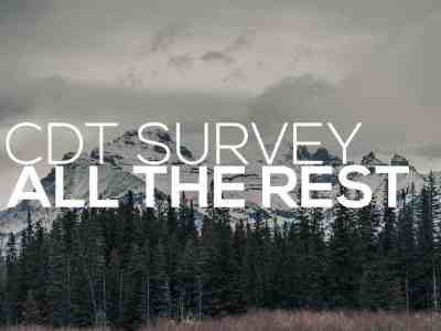 CDT Survey All Posts
