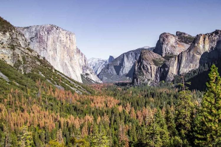 Sierra Yosemite