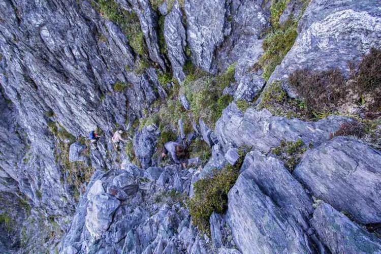 Tasmania Federation Peak Track Climbing