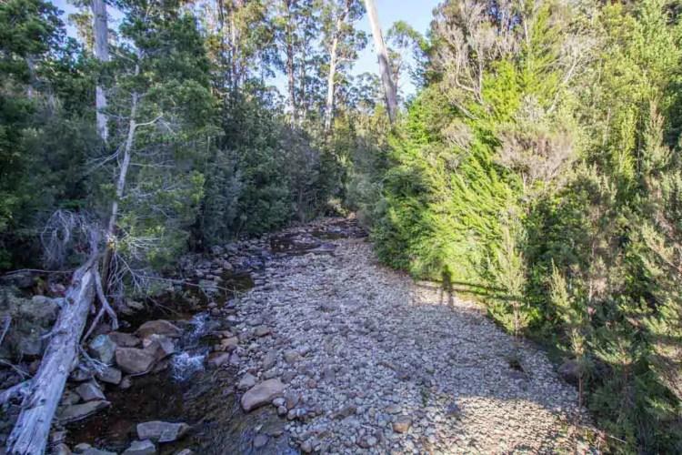 Tasmania Federation Peak Track Bridge