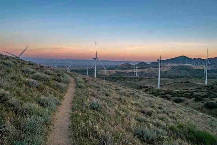PCT Desert Mojave Wind Farm