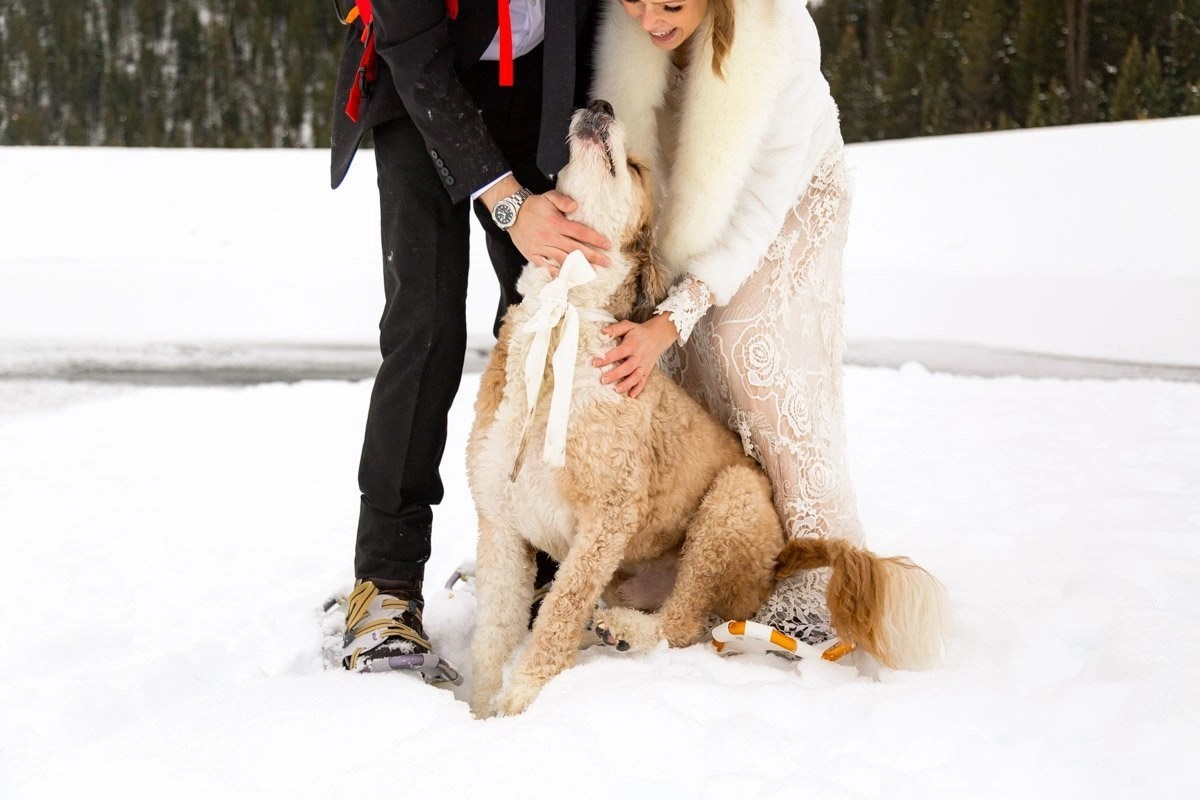 puppy cuddles during a winter elopement in Utah